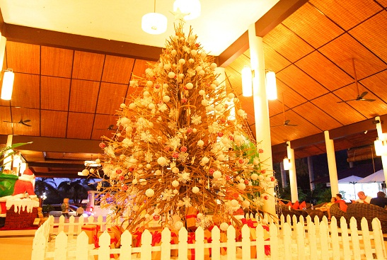 XMAS TREE LIGHTING CEREMONY ON DEC. 5TH