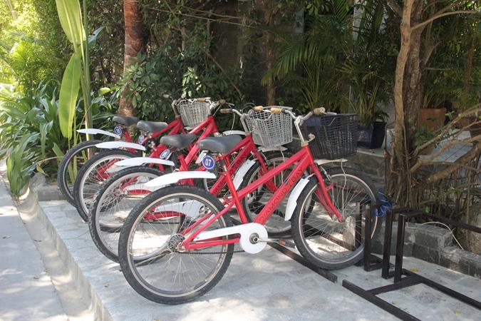 Complimentary Bike